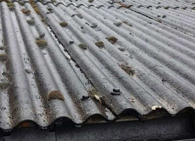 RAW Asbestos Surveys & Sampling